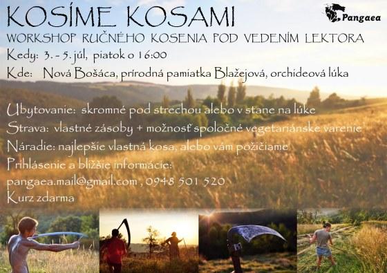 kurz_kosenia2015a